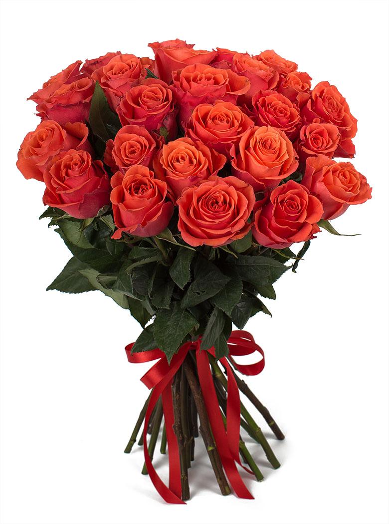 25 Элитных роз 50 см