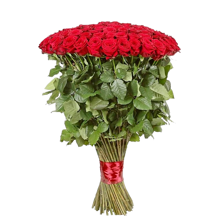 25 Элитных красных роз 100 см